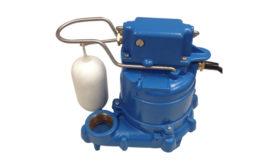 Goulds Durable Sump Pump